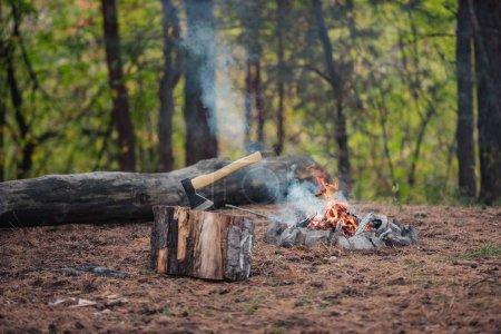 Photo pour Hache et feu de joie dans la forêt d'automne - image libre de droit