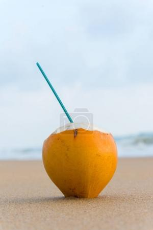 cocktail in coconut with straw