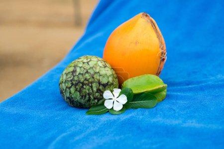 tropical fruits composition