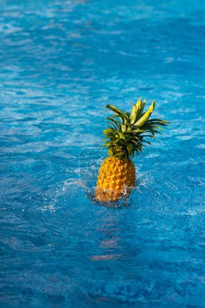 Photo for Pineapple falling in blue water of swimming pool - Royalty Free Image