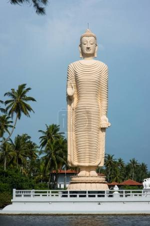 Photo for Standing buddha statue on river bank in Sri Lanka - Royalty Free Image