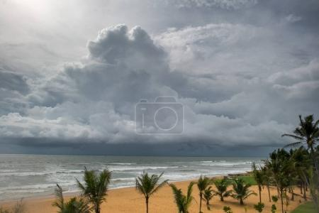 Photo for Stormy sky over sea at tropical island with palm trees on foreground - Royalty Free Image