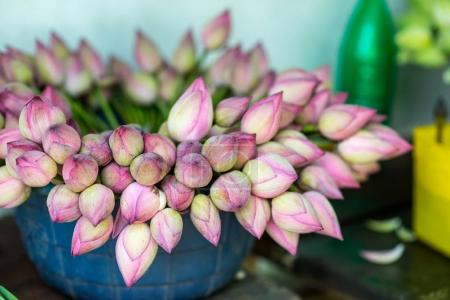 Photo pour Bouquet de belles fleurs de lotus dans un vase en plastique sur le marché - image libre de droit