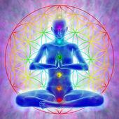 Meditation - flower of life