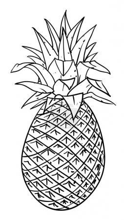 Illustration pour Image de dessin animé de l'ananas. Une image artistique à main levée . - image libre de droit