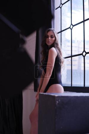Sensual brunette  posing near the window