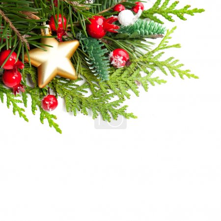 Christmas Background with Red Holly Berries, Xmas Tree Twig
