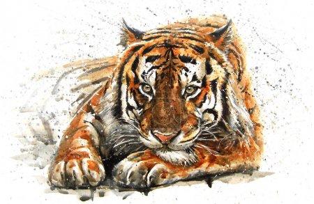 Photo pour Tigre, animaux, aquarelle, sauvage, chat, kostart, prédateur, faune, Bengale, art - image libre de droit