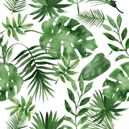 Photo for Watercolor tropical leaves on white background - Royalty Free Image