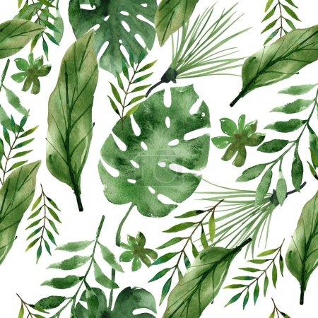 Foto de Acuarela tropical hojas sobre fondo blanco - Imagen libre de derechos