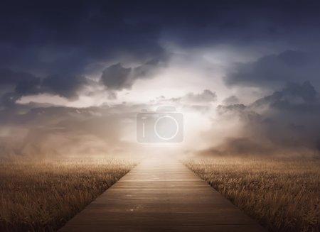 Photo pour Paysage champêtre avec brume au coucher du soleil et ciel nuageux - image libre de droit