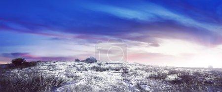 Winter snowy meadow landscape