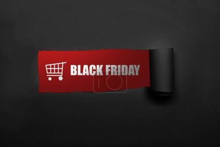 Shopping cart and Black Friday text