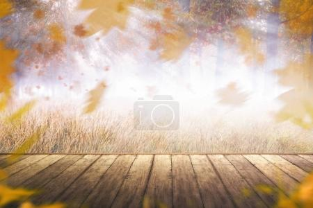 Image of autumn scenery