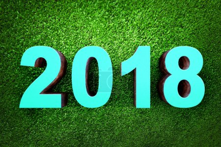 Blue numbers 2018 from wood on grass background. Happy New Year 2018
