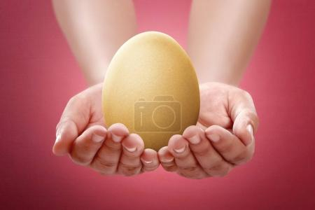 people hand hold plain egg