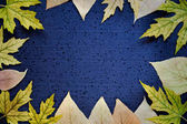 Autumnal background - frame of autumn leaves on a dark blue background. Place for text