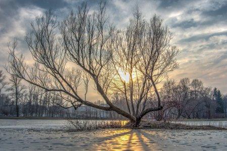 Winter sunset and lake