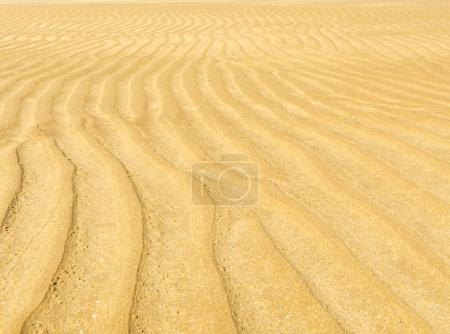 Photo pour Modèle d'ondulation de sable pour le fond naturel - image libre de droit
