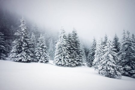 Christmas background of snowy winter landscape wit...