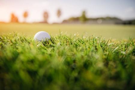 Photo pour Vue rapprochée de la balle de golf blanche sur herbe verte - image libre de droit