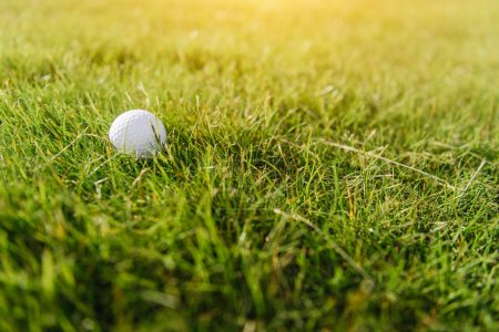 Photo for Close-up view of white golf ball on green grass - Royalty Free Image