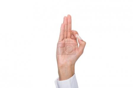 person showing ok sign