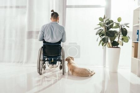 man on wheelchair and his dog