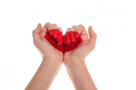 Photo for Cropped shot of human hands with heart symbol isolated on white - Royalty Free Image