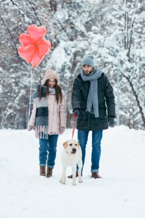 Photo for Young couple with heart shaped balloons and dog walking in winter snowy park - Royalty Free Image