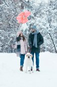 young couple with heart shaped balloons and dog walking in winter snowy park