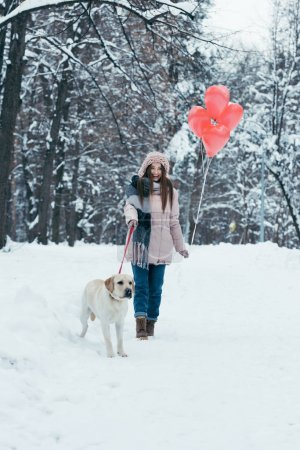 Photo for Happy young woman with dog on leash and heart shaped balloons in hands in snowy park - Royalty Free Image