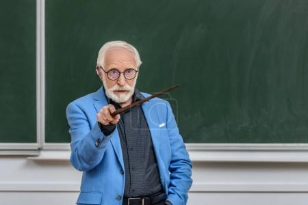grey hair professor pointing on something at lecture hall