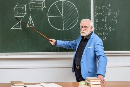grey hair professor pointing on something with wooden pointer
