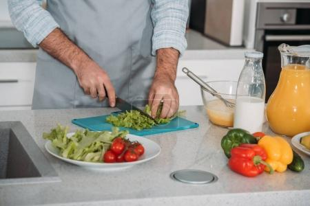 cropped image of man cutting vegetables