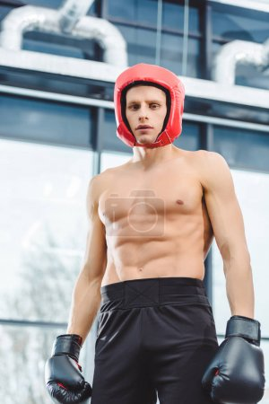 low angle view of young muscular shirtless boxer looking at camera in gym