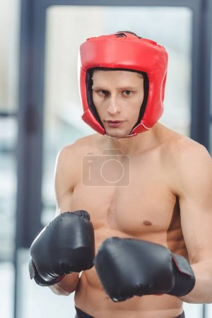 young shirtless muscular boxer looking at camera in gym