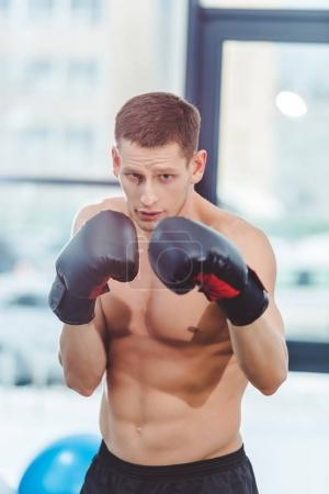 shirtless muscular sportsman boxing in gym