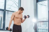 muscular shirtless sportsman training with dumbbells in gym