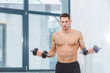 shirtless sportsman holding dumbbells and looking at camera in gym