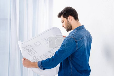 handsome man looking at blueprint on white