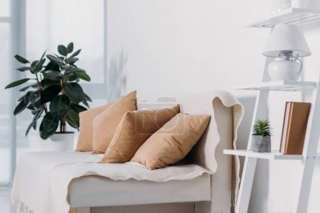 Photo pour Canapé avec oreillers et plantes en pot dans la chambre - image libre de droit