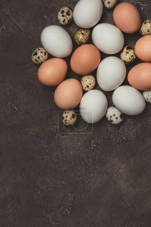 Photo for Top view of chicken and quail eggs on table - Royalty Free Image