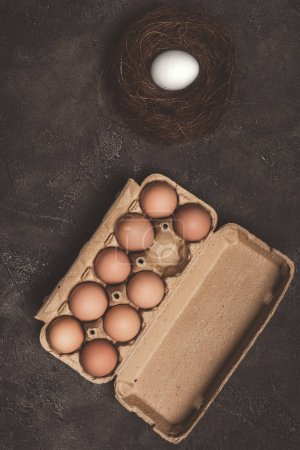 top view of chicken eggs in cardboard tray and nest