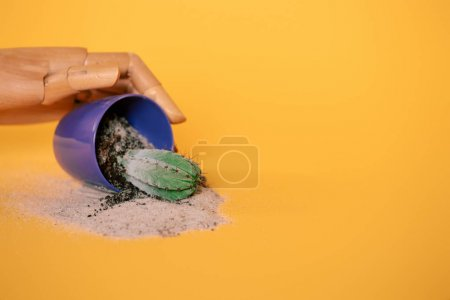 hand of mannequin and cactus in blue pot on yellow