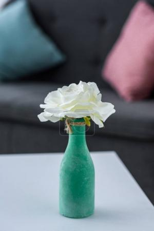 close up view of flower in vase on coffee table in living room