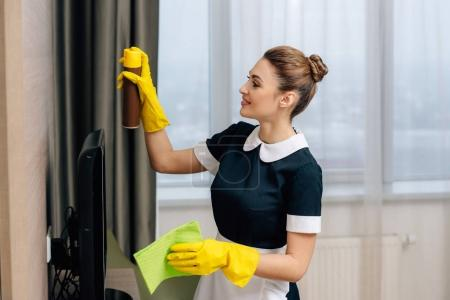 young beautiful maid in uniform doing cleaning with rag and aerosol furniture cleaner