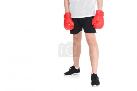 Cropped image of young sportsman in boxing gloves isolated on white