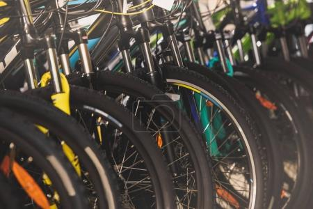 close-up view of wheels of bikes selling in bicycle shop