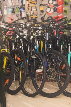 various bicycles displayed in bicycle shop
